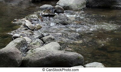 Tight Shot Of Creek Flowing - Small Creek Flowing Over Rocks...