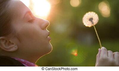 Woman Blowing on a Dandelion - Woman blowing dandelion seeds...
