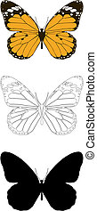 butterfly - Vector butterfly