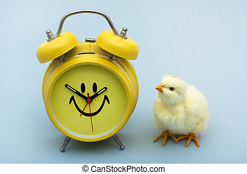 Spring Time - A yellow baby chicken with a clock sitting on...