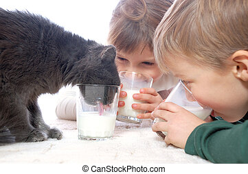 Kids and cat drinking milk together - 2 children and pet cat...