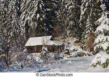small cabin covered with fresh snow - mountain house near...