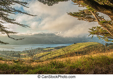 Pastures of Otago Peninsula, NZ - Pastures of Otago...
