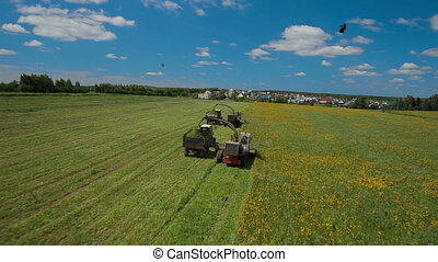 Aerial view of a farmer harvesting silage - Aerial view of a...
