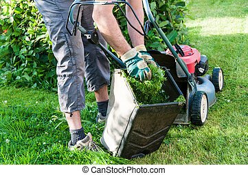 lawn mowing - mowing the lawn in my garden