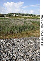 Omonville la Rogue - France, Normandy, Cotentin, landscape