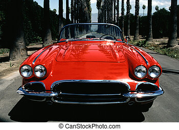 Corvette Front - Red Corvette on street lined with palms