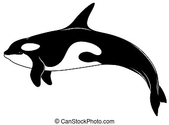 Killer whale, tattoo - The image Killer whale in a profile