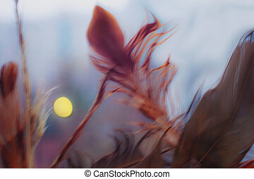 Background with eagle feathers - Abstract background with...
