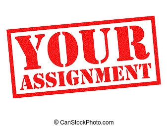 YOUR ASSIGNMENT red Rubber Stamp over a white background