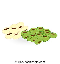 bean isolated on white background