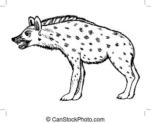 illustration of hyena, wildlife, nature, animal - sketch...