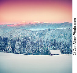 Foresters hut covered with snow in the mountains at sunrise...