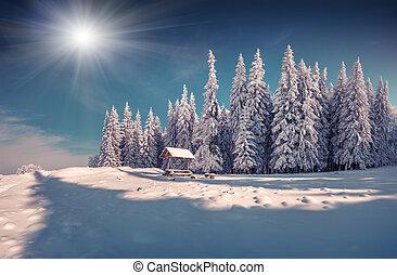invierno, hada, cuento, después, pesado, nevada, en,...