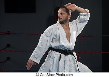 Taekwondo Fighter Expert With Fight Stance - Young Man...