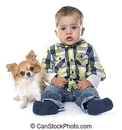 little boy and chihuahua