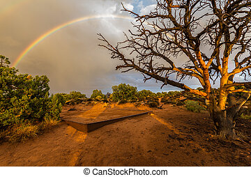 Rainbow in the desert of Canyonlands, USA