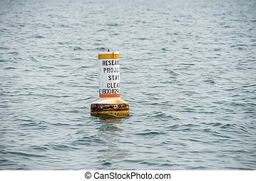 research project buoy stay clear in water