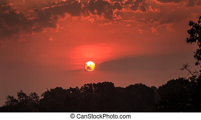 motion of sun among red sky above tree silhouettes at...