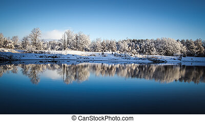 Panoramic Winter Lake Reflections - Snow covered trees...