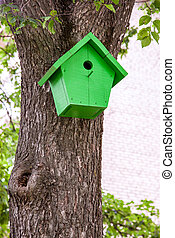 Green birdhouse hanging from a tree