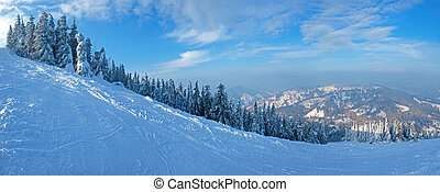 Panorama of ski piste on the background of spruce forest...