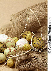 codorniz, huevos, Pascua, cinta
