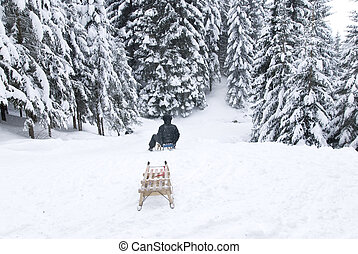sled in ion toboggan run - woman sitting on a sled in the...