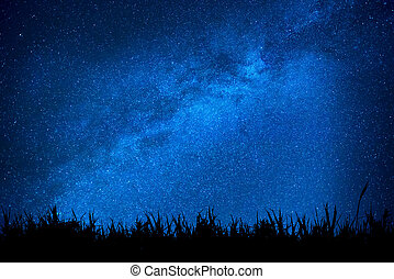 Blue night sky with stars above field of grass - Blue dark...