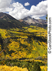 San Juan mountains - Colorful trees on San Juan mountains...