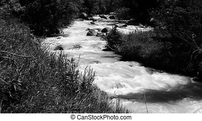 it is black white shooting of the prompt mountain river -...