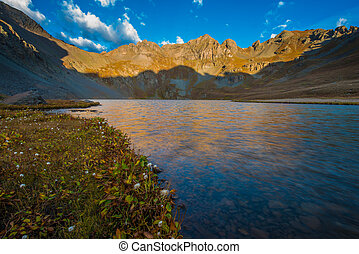 Wild Flowers Clear Lake near Silverton San Juan Mountains -...