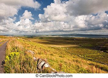 landscape of rural ireland, west coast ireland