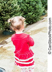 Toddler - Cute toddler girl looking for Christmas tree.