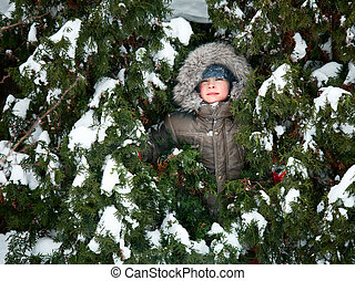 Kid hiding in fir trees - Young boy wearing winter jacket...