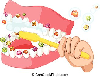 Brushing teeth and cleaning out bacteria illustration