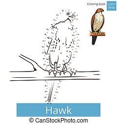 Hawk bird learn birds coloring book vector - Hawk bird learn...