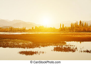 Holy Fish Pond, Shey Monastery - Sunrise view at Holy Fish...