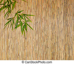 bamboo Background great for any project. frame of...