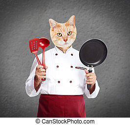 Cat chef - Ginger cat chef over gray wall background