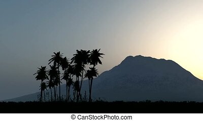 Tropical jungle background with palm tree silhouettes and...