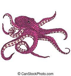 Common octopus illustration pink - Pink octopus illustration...