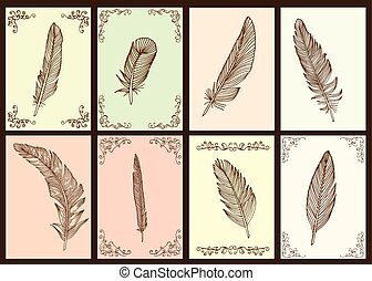 Feather collection - Writing feather collection