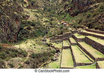 Ancient agricultural terraces of the Pisac Sacred Valley in...
