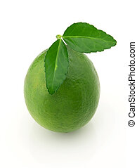 Lime with leaves