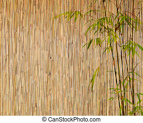bamboo Background great for any project frame of...