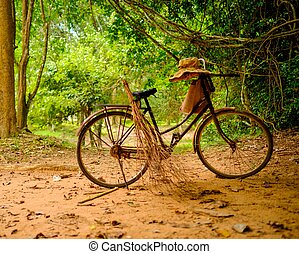 Vintage bicycle standing in the tropical forest