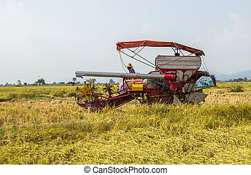 Harvester machinery, tractor at farm with combine collecting...