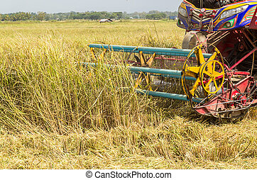 Detail of harvester machinery, tractor at farm with combine...