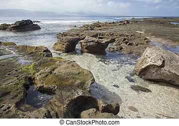 rock formation on El Confital beach, Las Palmas de Gran...